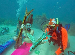 Lower Keys Underwater Music Festival, held in an unusual sub-sea setting, provides a melodic experience that spotlights coral reef protection and environmentally responsible diving.